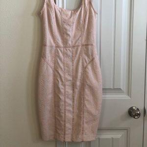 Cache dress worn once